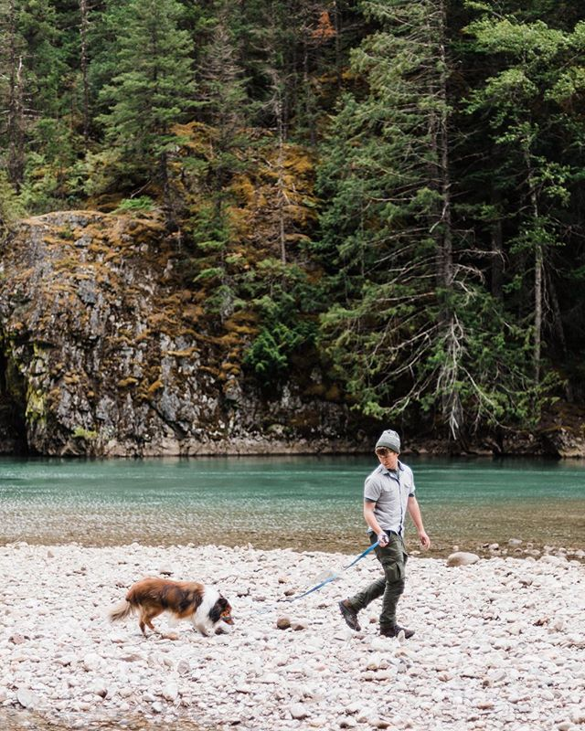 Exploring the riverbed with my favorite furry friend @simontheshetland.