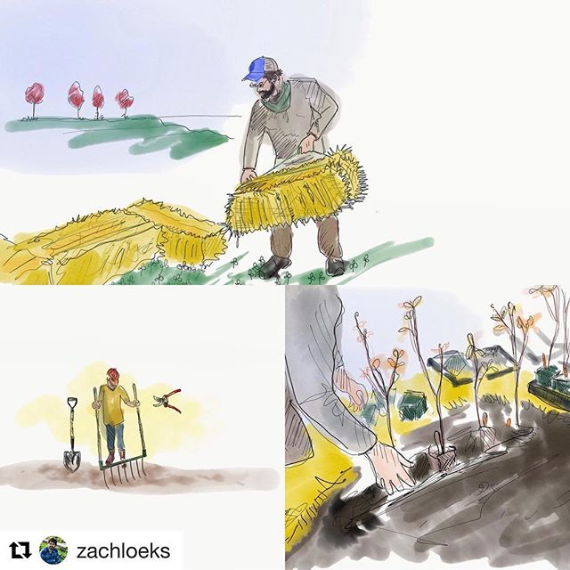 Another great post from @zachloeks ! One of the many presenters we have at this years Symposium. LINK TO TICKETS IN OUR BIO. 😎  #Repost @zachloeks ・・・ Hugelkultur is wonderful method for retaining soil moisture, enhancing soil biological activity and increasing yields from quality food plants.  Check out NOFA Vermotn online for the upcoming workshop this weekend! 🌿🌏🏡 #permaculture #hugelkultur #garden #homestead #freshfood #compost #soil #design #marketgarden @nofavermont @elevenacrefarm