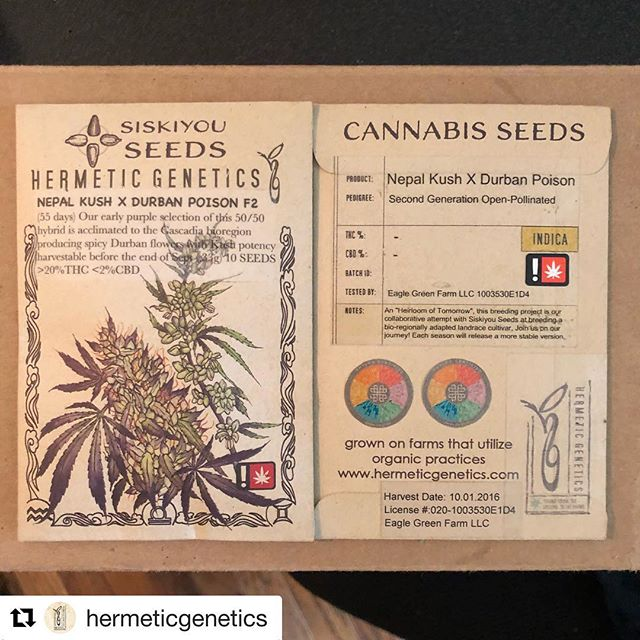 Super excited to have @hermeticgenetics and @siskiyouseeds at this years @livingsoilssymposium to talk about their breeding projects and all things seed and the grand cycle of life. GRAB YO TICKETS! Link in OUR BIO. #Repost @hermeticgenetics ・・・ Available this week!! @ss_x_hg #organically produced #cannabisseeds from  #southernoregon #permaculture #farms ~ get some! Available at your local #dispensary or #online FIRST @neptune.seed.bank @neptune_seed_bank #neptuneseedbank  #hermeticgenetics @siskiyouseeds  #bestbreeders #westcoast #seeds