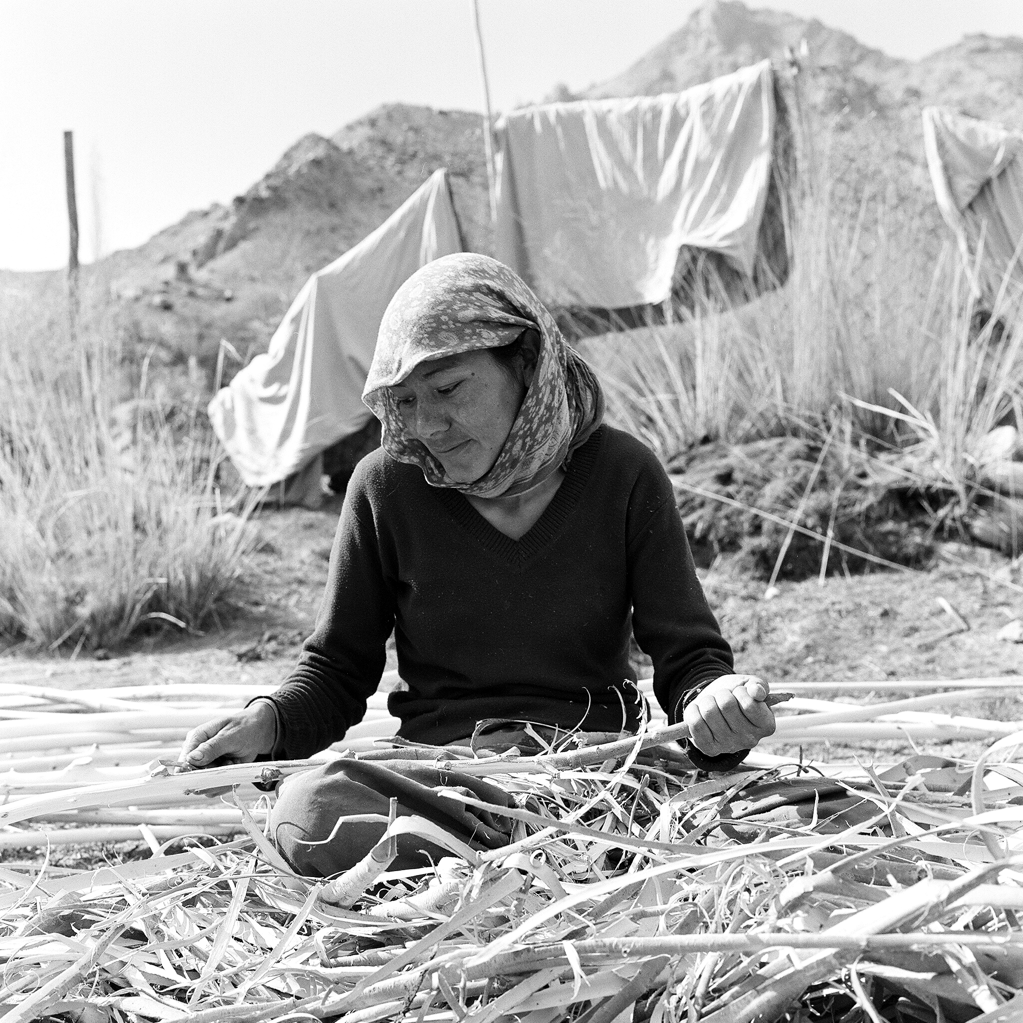 This young woman and her mother, are the two other main habitants of the village Larchman came to help. She's peeling poplar wood poles, a widespread material used in the constructions.