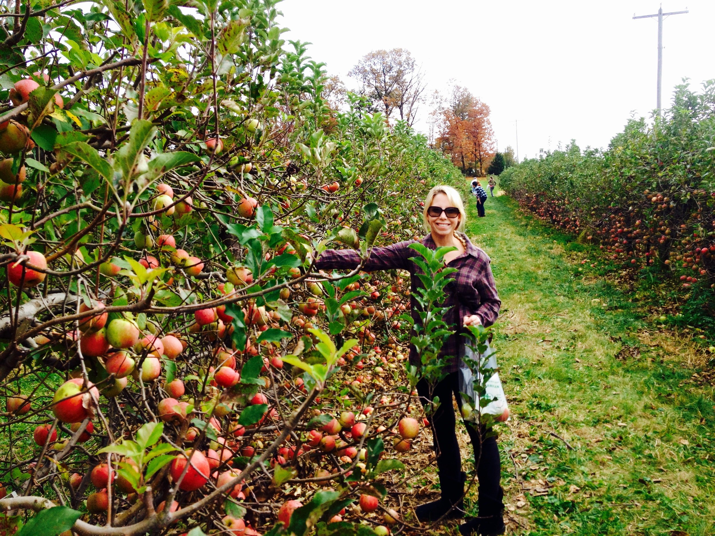 Nicole in apple orchard.jpeg