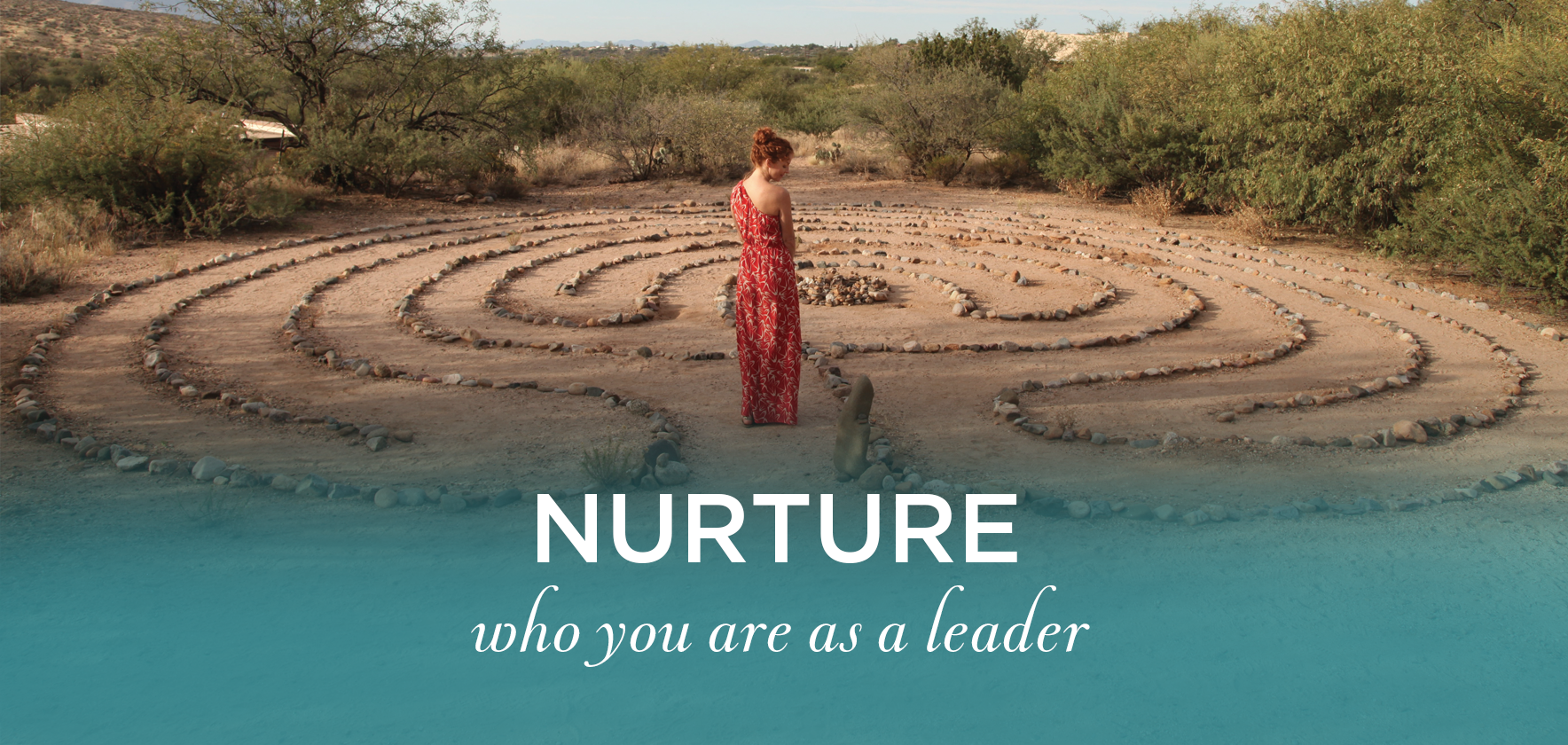 nurture_new.png