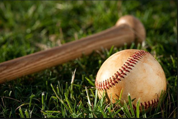 Bat,Ball,Grass Pic.jpg