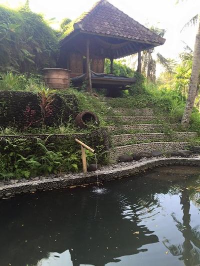 eat pray doula ballarat birth support bali indonesia (1).jpg