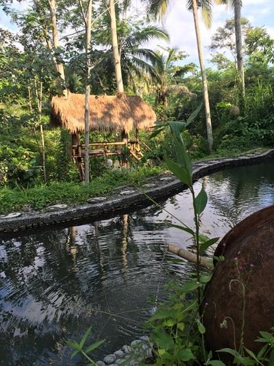 eat pray doula ballarat birth support bali indonesia (19).jpg