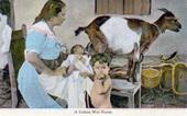 wet nursing source unknown.jpg