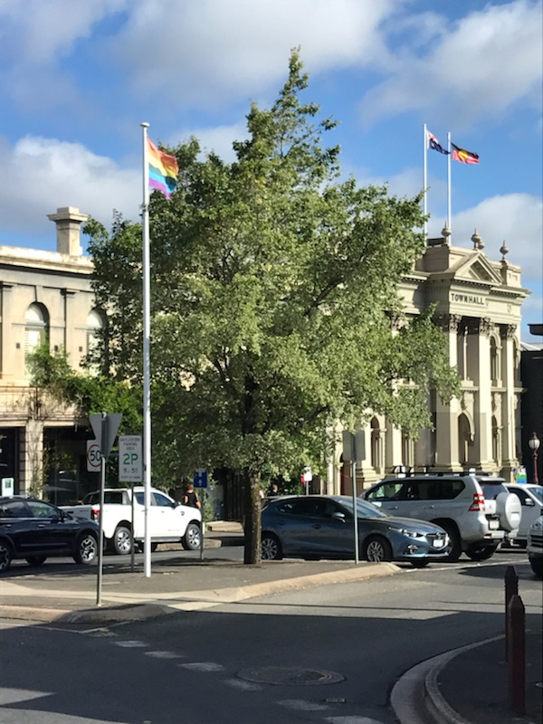 Vincent Street flag pole, 2017