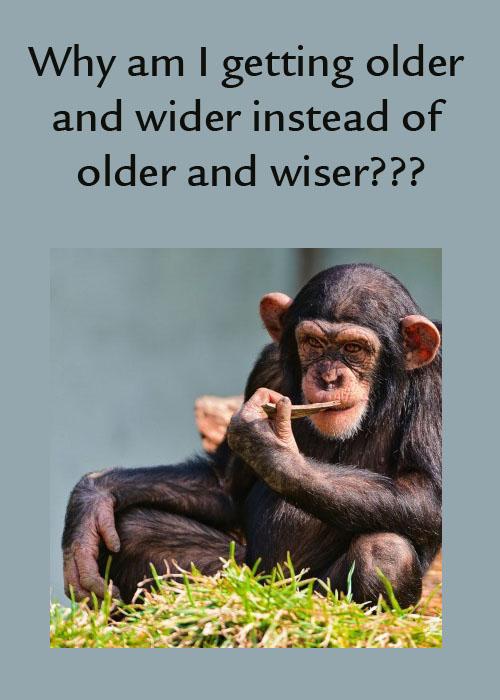 older and wider.jpg