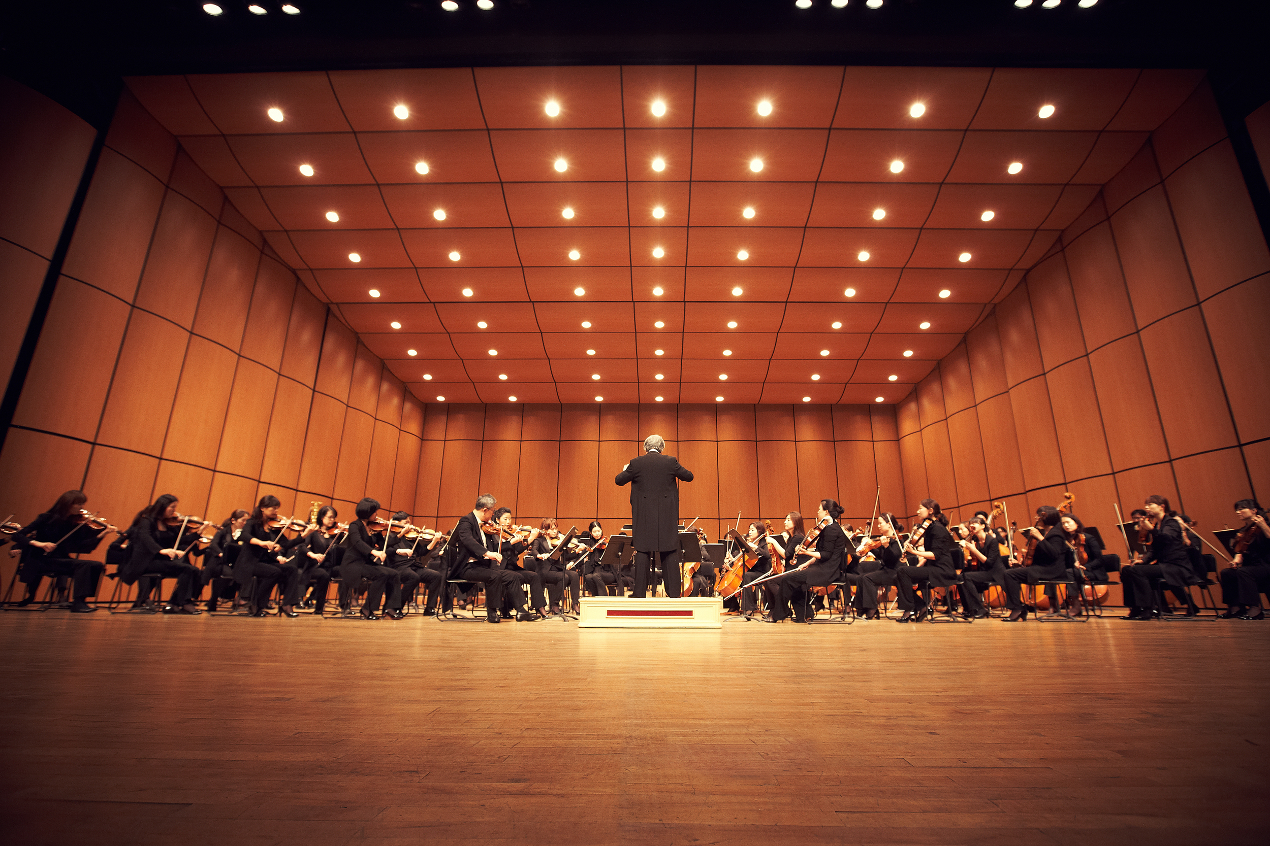 Suwon Philharmonic Orchestra 2.jpg