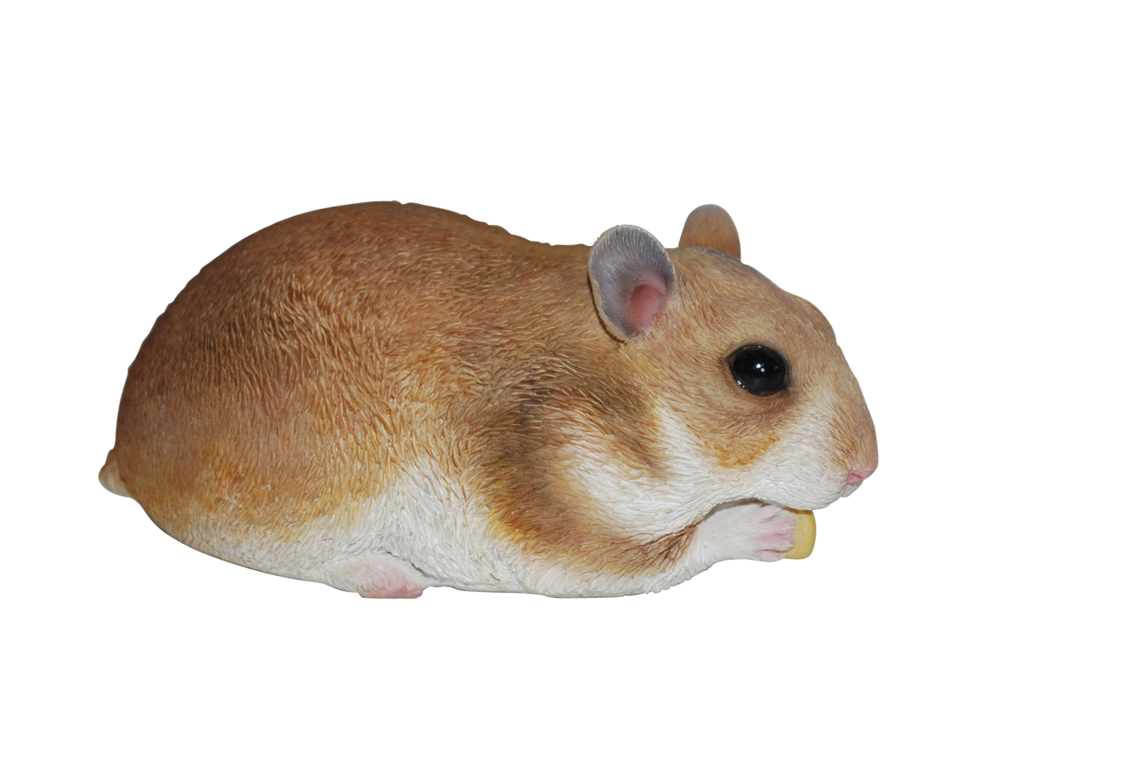 Hamsters__1_ (1).png