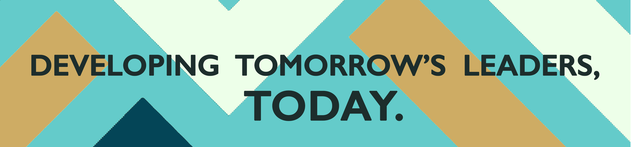 developing tomorrow's leaders today.jpg