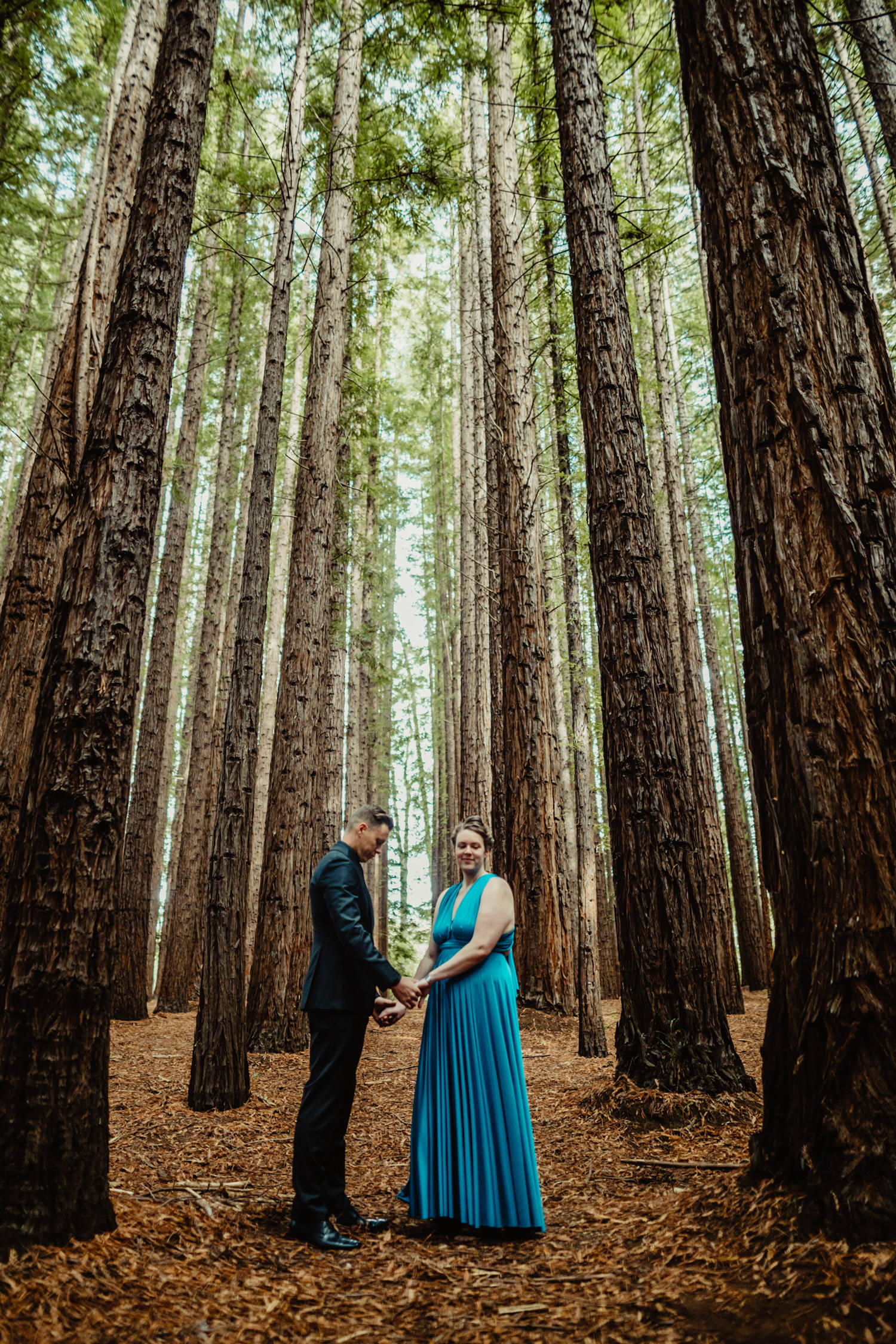 020-redwood-forest-warburton-wedding.jpg