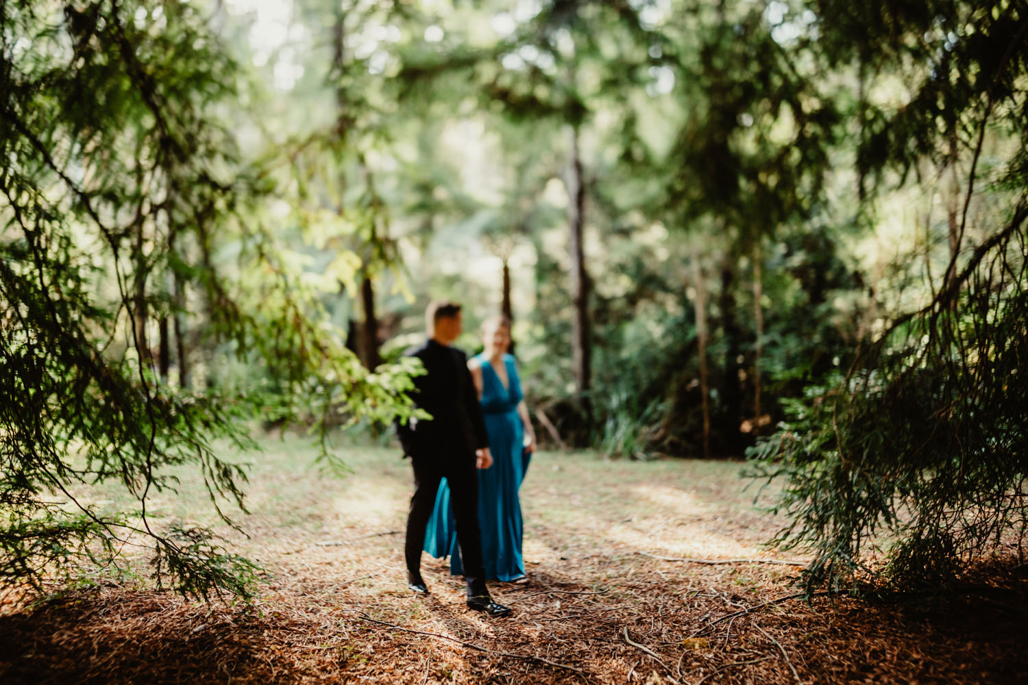 033-redwood-forest-warburton-wedding.jpg