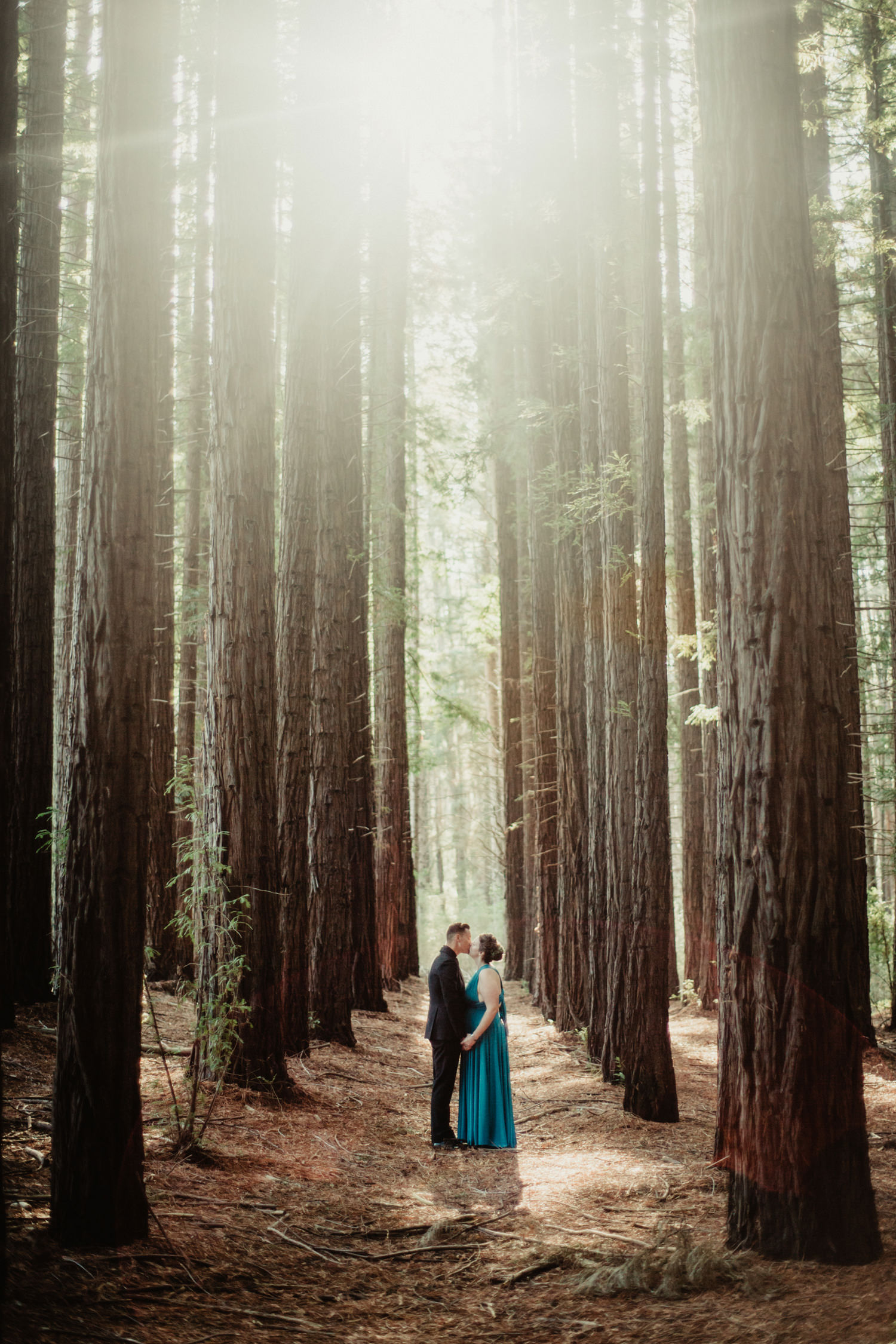 050-redwood-forest-warburton-wedding.jpg