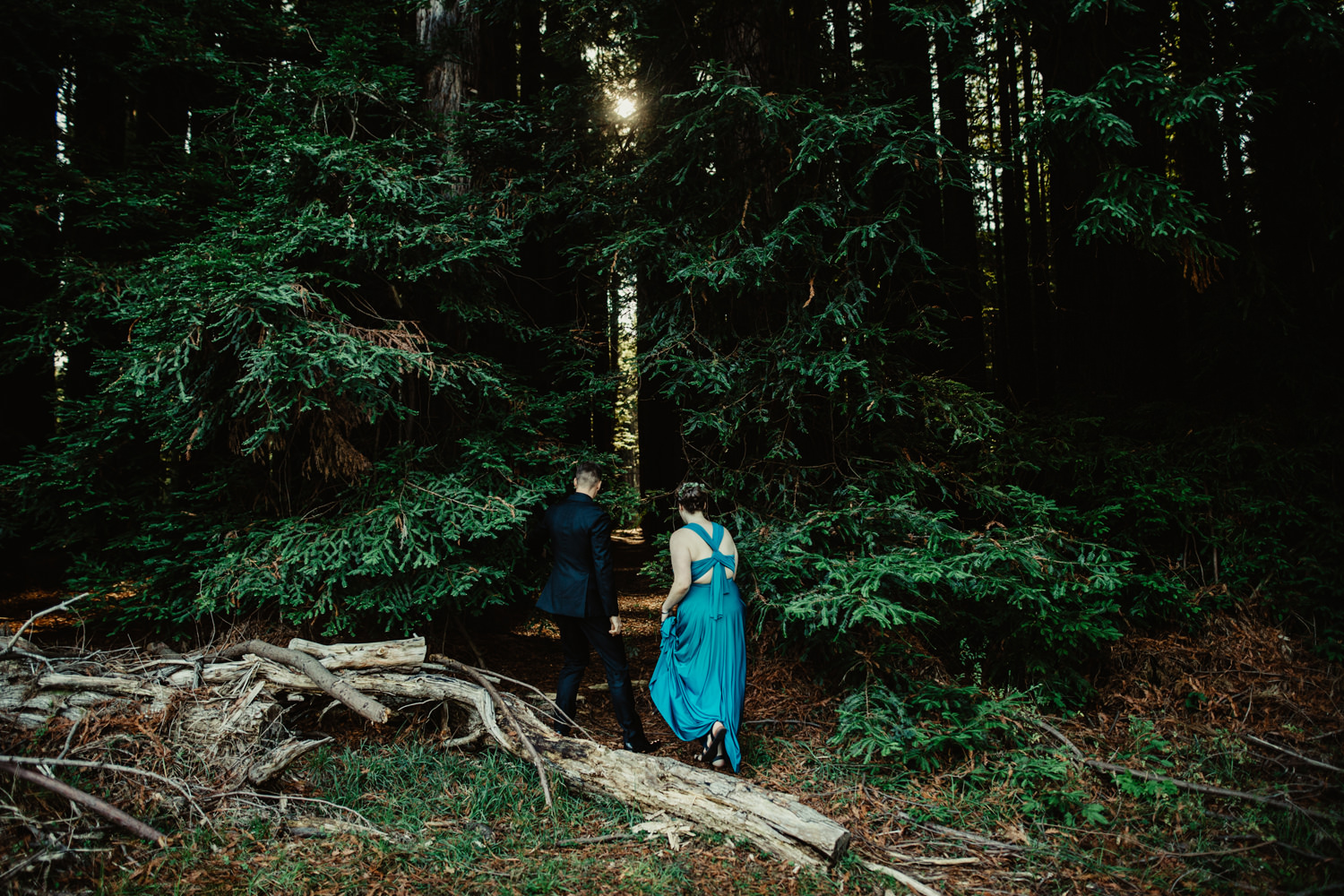 049-redwood-forest-warburton-wedding.jpg