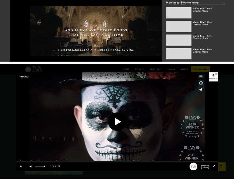 Embedded video player (Top), Modal video player (Bottom)