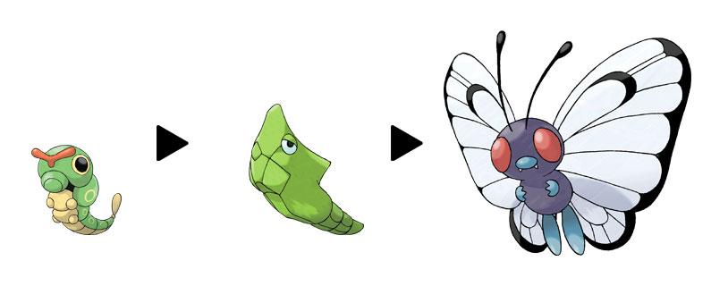 Vikkipedia-To-Pimp-A-Butterfree-Evolution