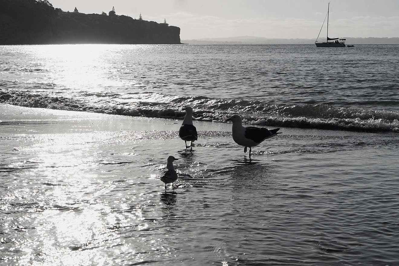 Vikkipedia-Staycation-Auckland-1-Blak-Lace-Img12-3x2.jpg
