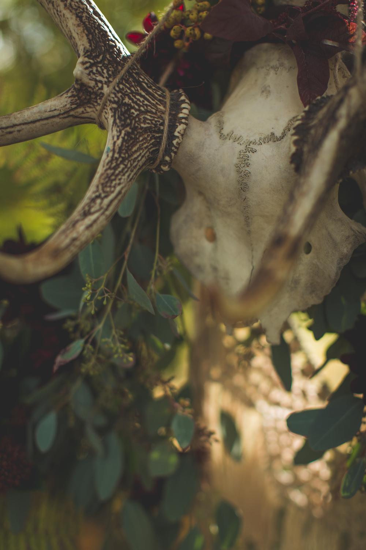 shooting-inspiration-kinfolk-boheme-couleurs-automne-decoration-detail-crane-cerf-feuillage-camille-marciano-physalis.jpg