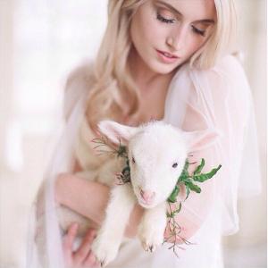 blog-mariage-parisianinspired-instagram