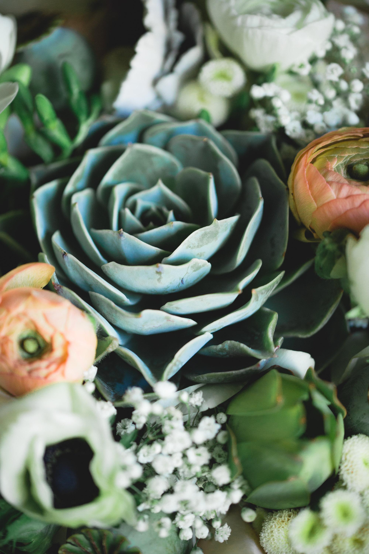 Adore Wedding Photography-13344.jpg
