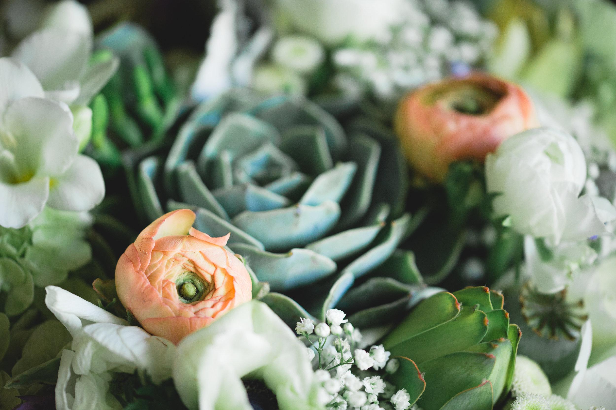 Adore Wedding Photography-13345.jpg