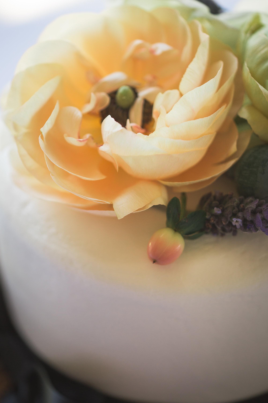 Adore Wedding Photography-13434.jpg