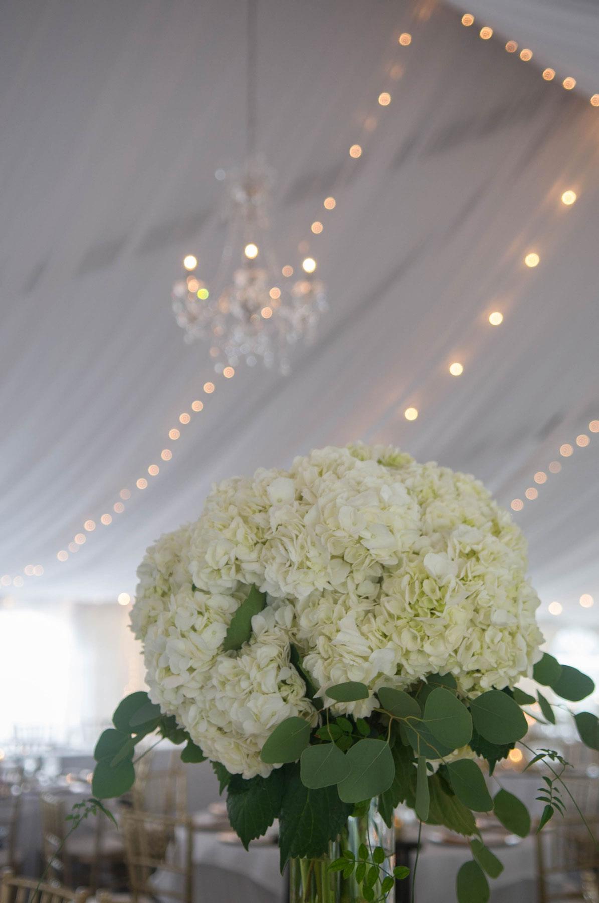 Cooper-wedding-(568).jpg