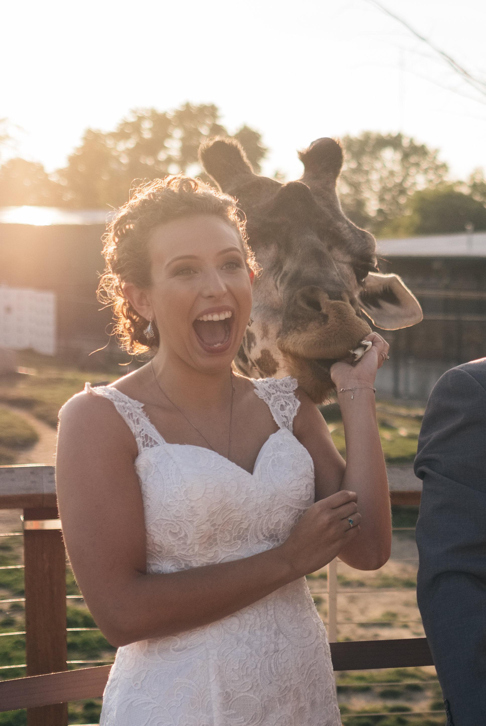 Brooke+Kelly_Wedding-341-Copy1.jpg