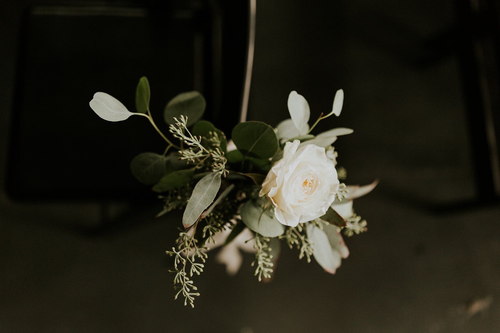 Adore Wedding Photography-11617.jpg