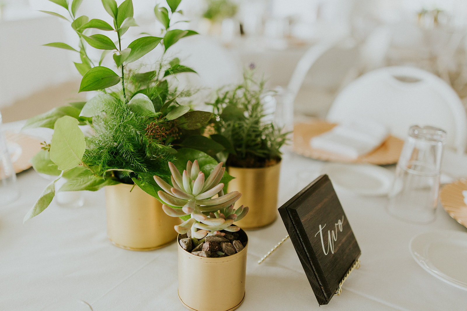 Adore Wedding Photography-11912.jpg