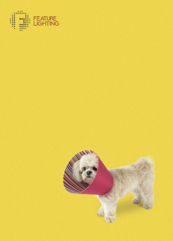 Daisy - Cone of Shame Lampshade