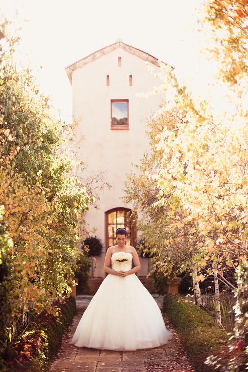 Wedding Photography Sydney1 (64).jpg