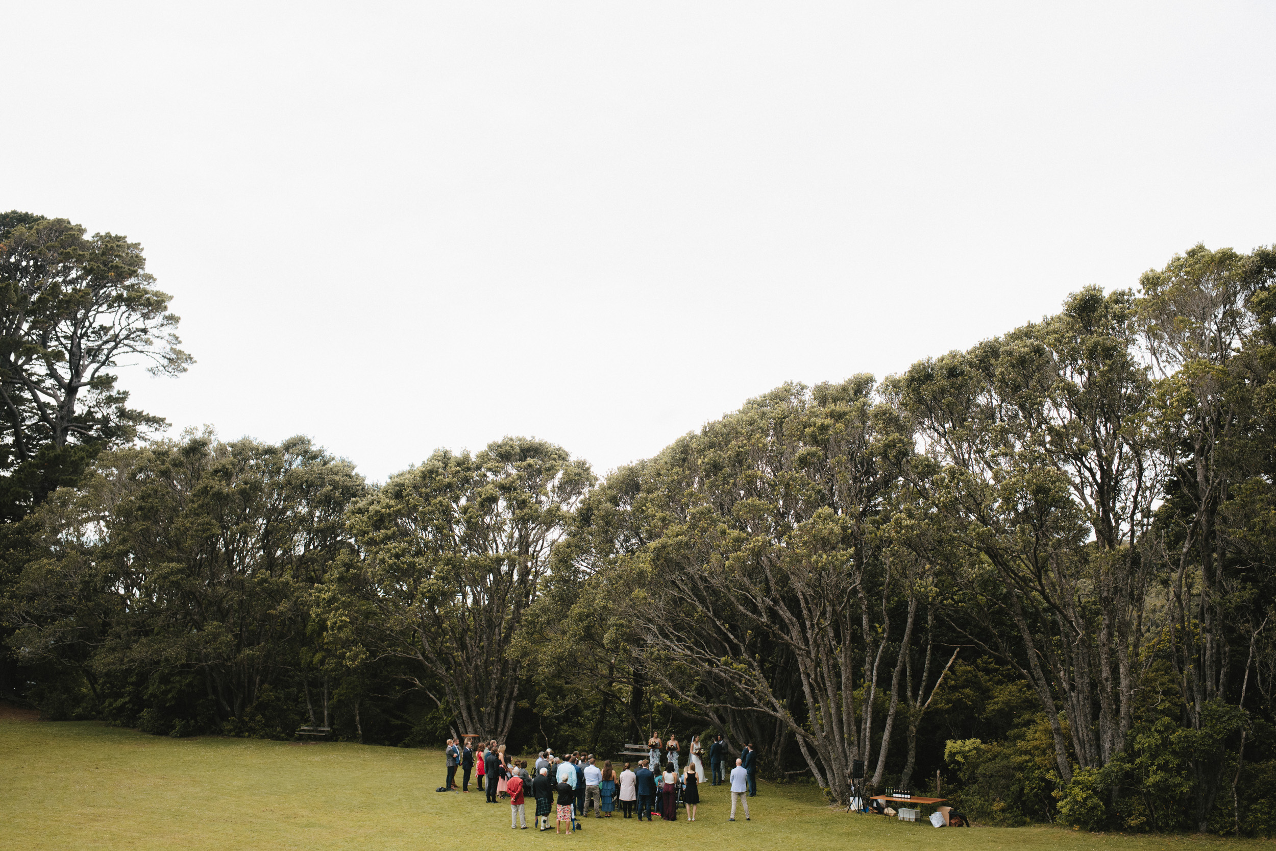 Wellington Botanical Garden Ceremony-2.jpg