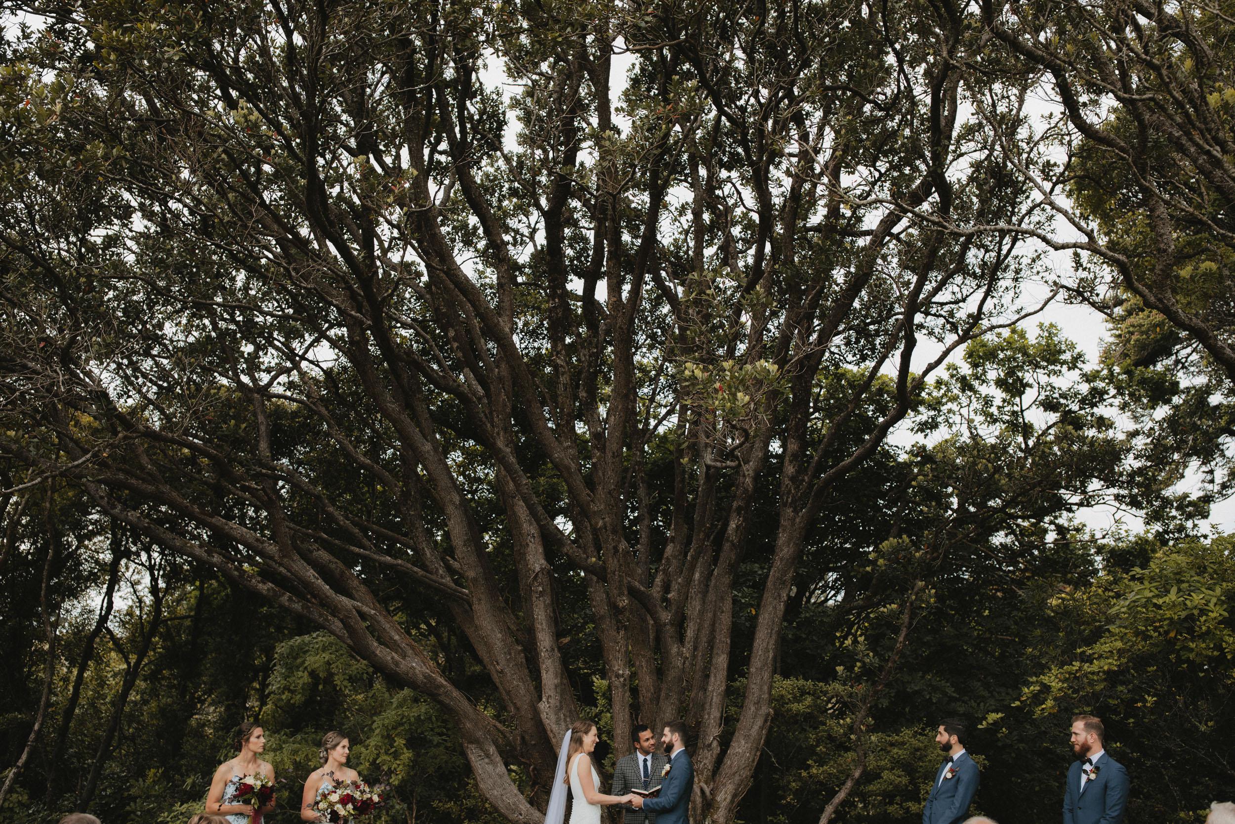 Wellington Botanical Garden Ceremony-4.jpg