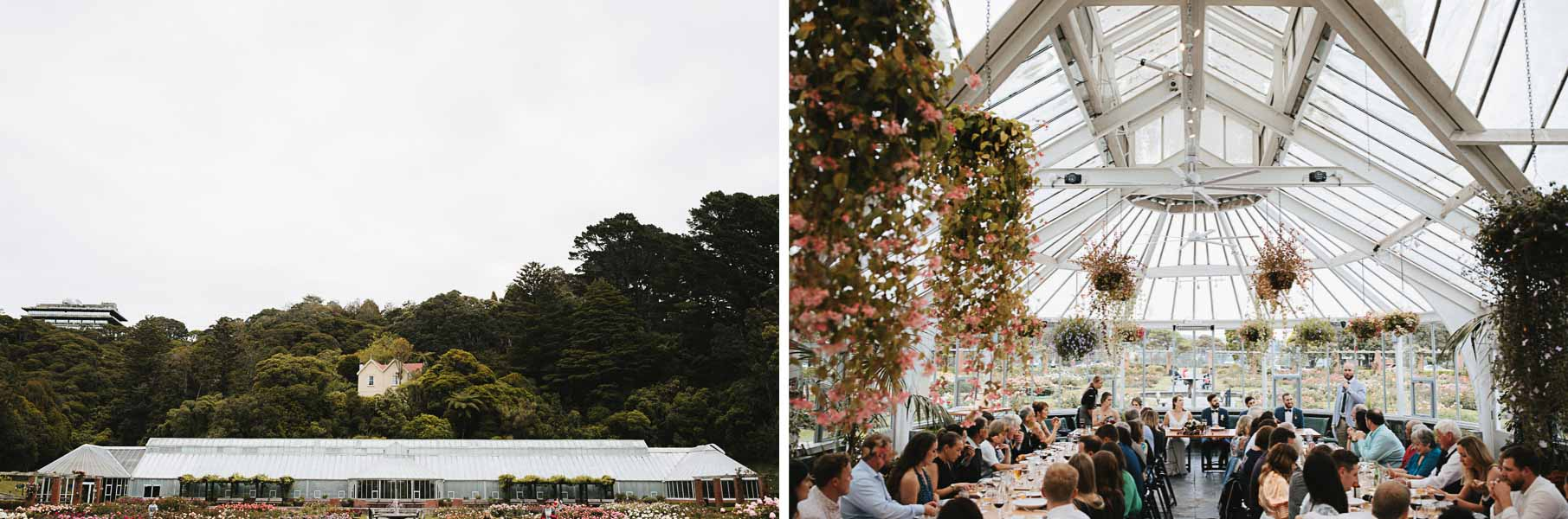 Wellington Botanical Garden Winter Wedding