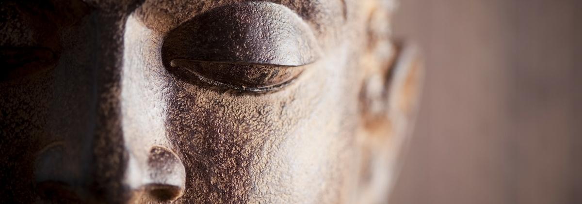 Meditation and Stress Management Retreat Programme on the Bodhimaya wellness retreat