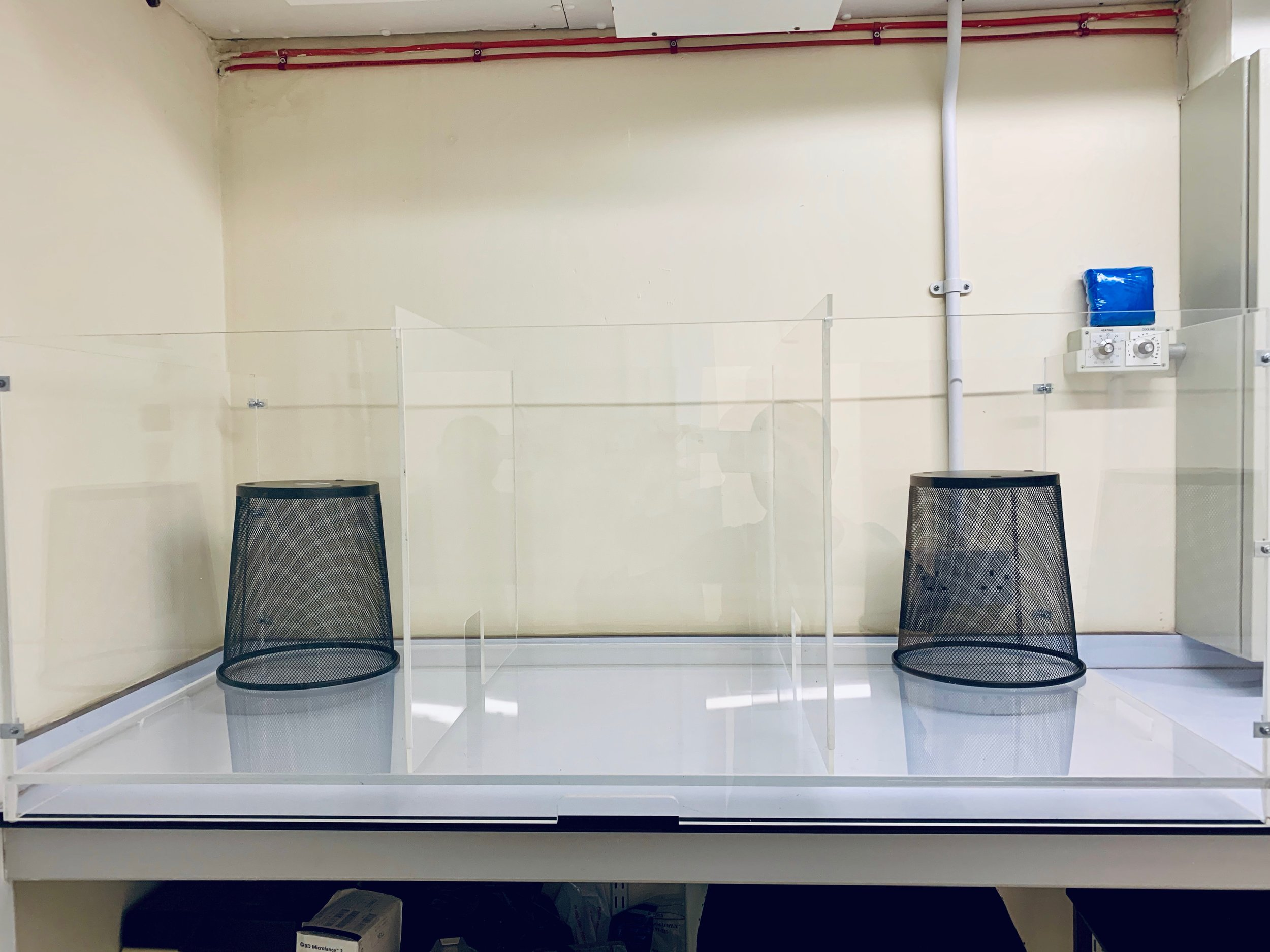 The Social Recognition Memory Test Chamber in PlasticityLab