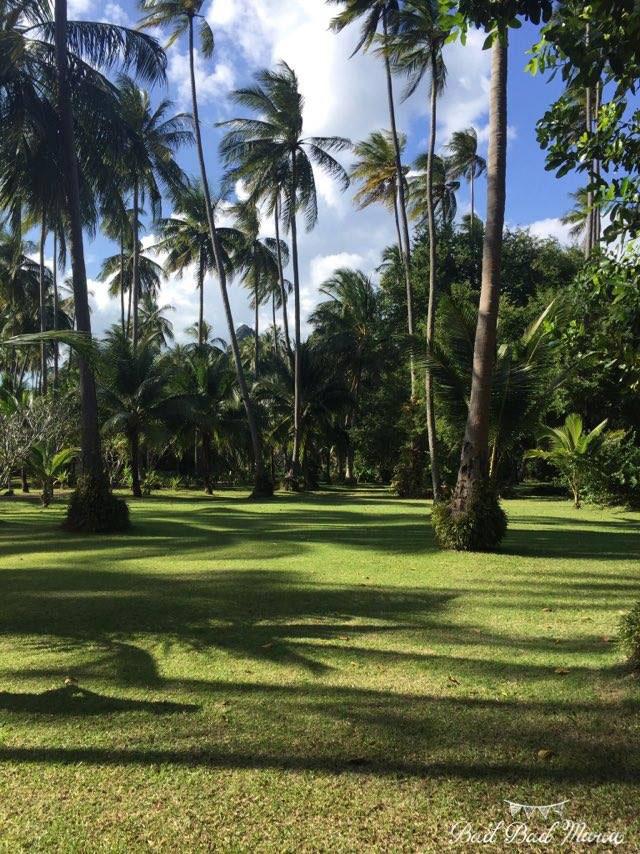 bad bad maria wedding destination thailand greenery surroundings.jpg