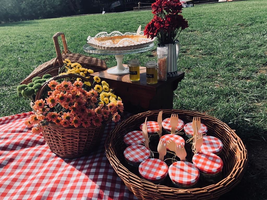 casados-a-primeira-vista-picnic