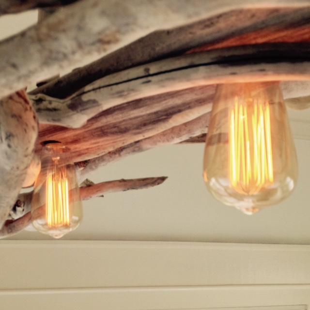 bulbs 2.jpg