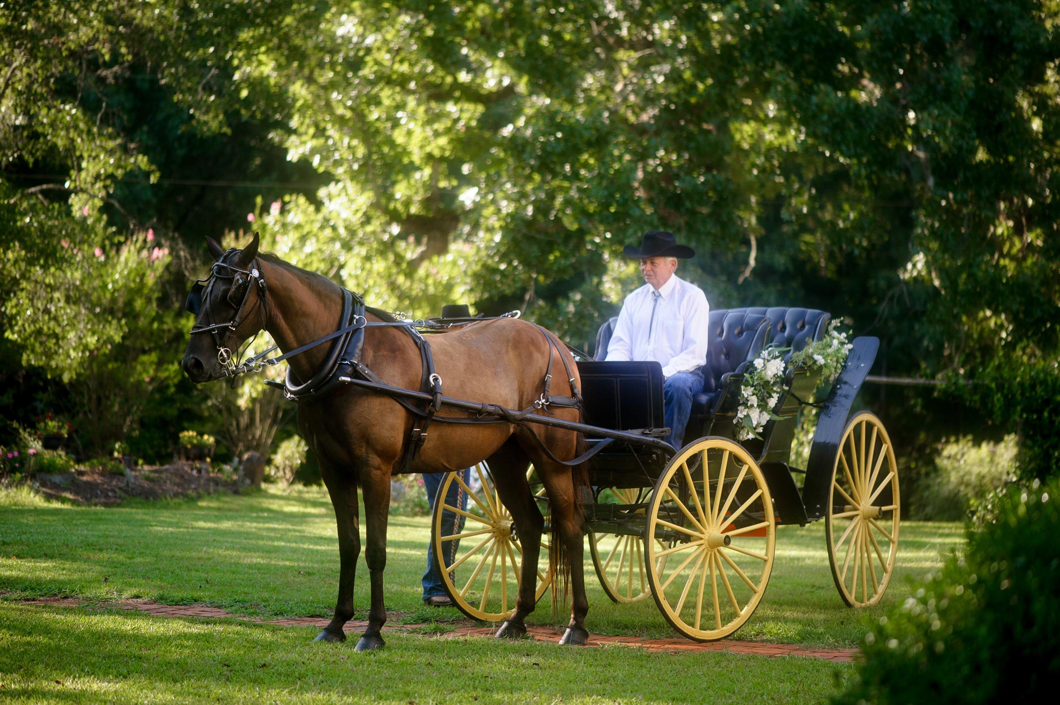 Outdoor Wedding-0314.JPG