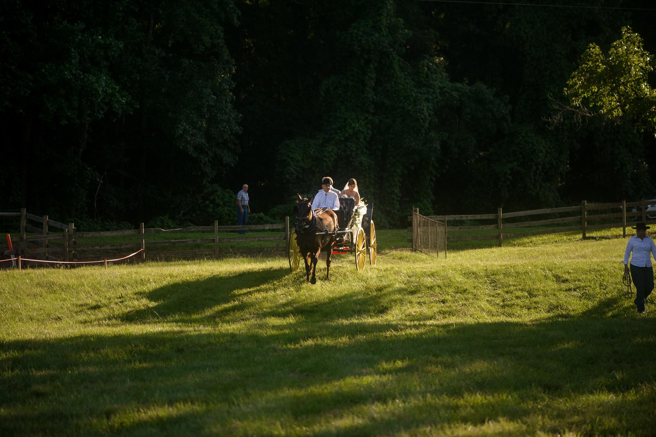 Outdoor Wedding-0339.JPG