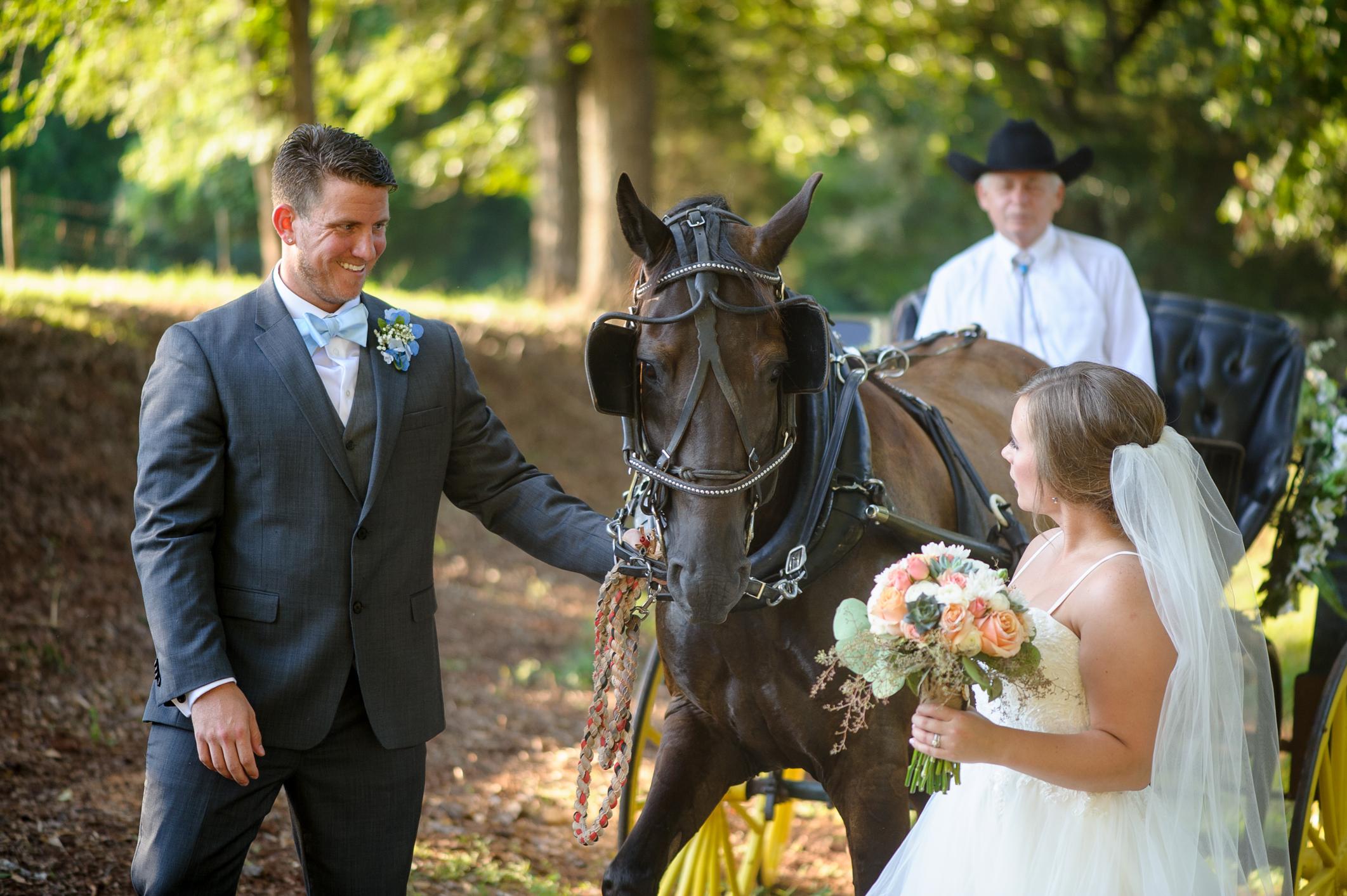 Outdoor Wedding-0488.JPG