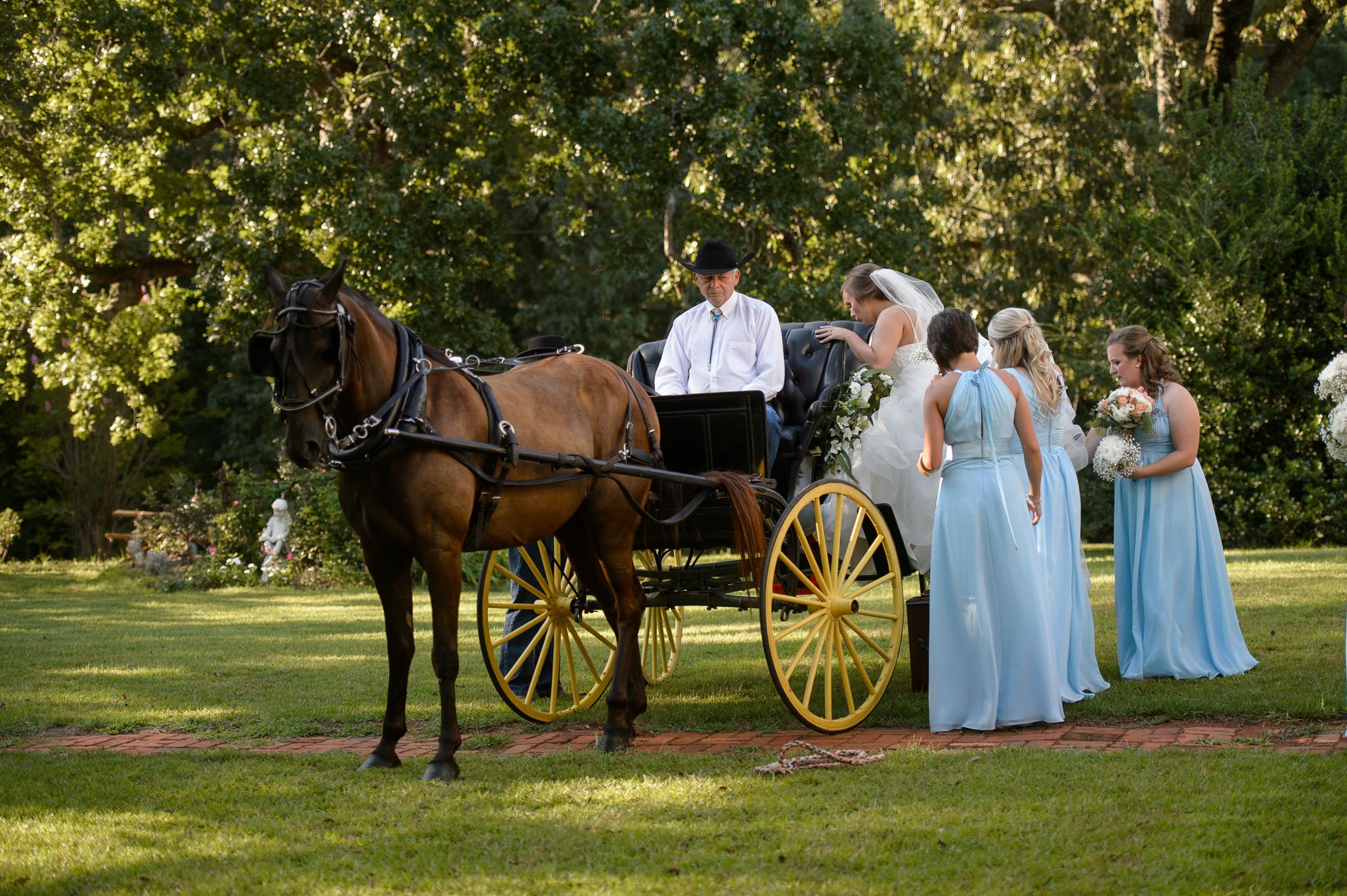 Outdoor Wedding-6150.JPG