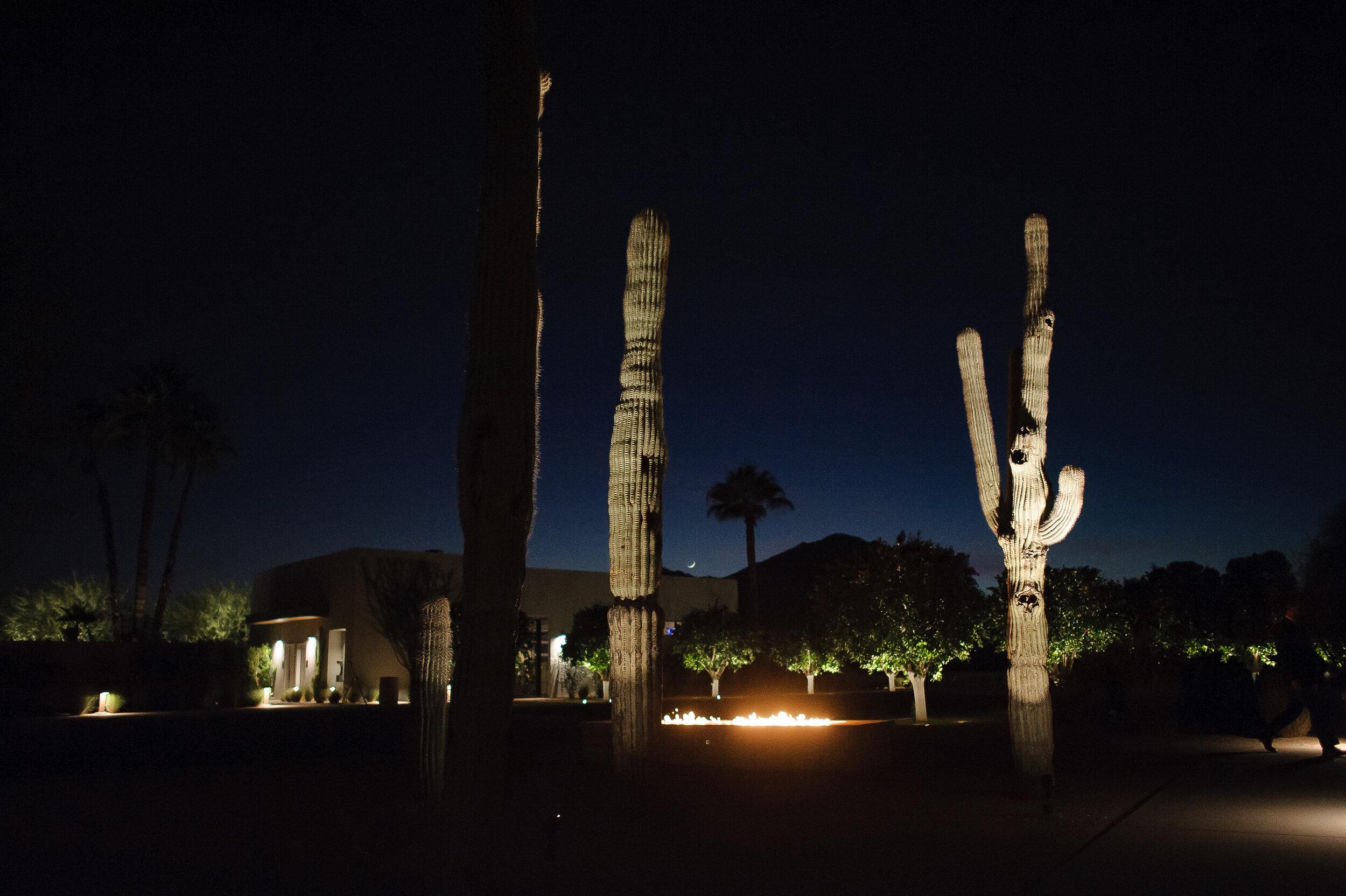 Winter Phoenix resort wedding3.jpg