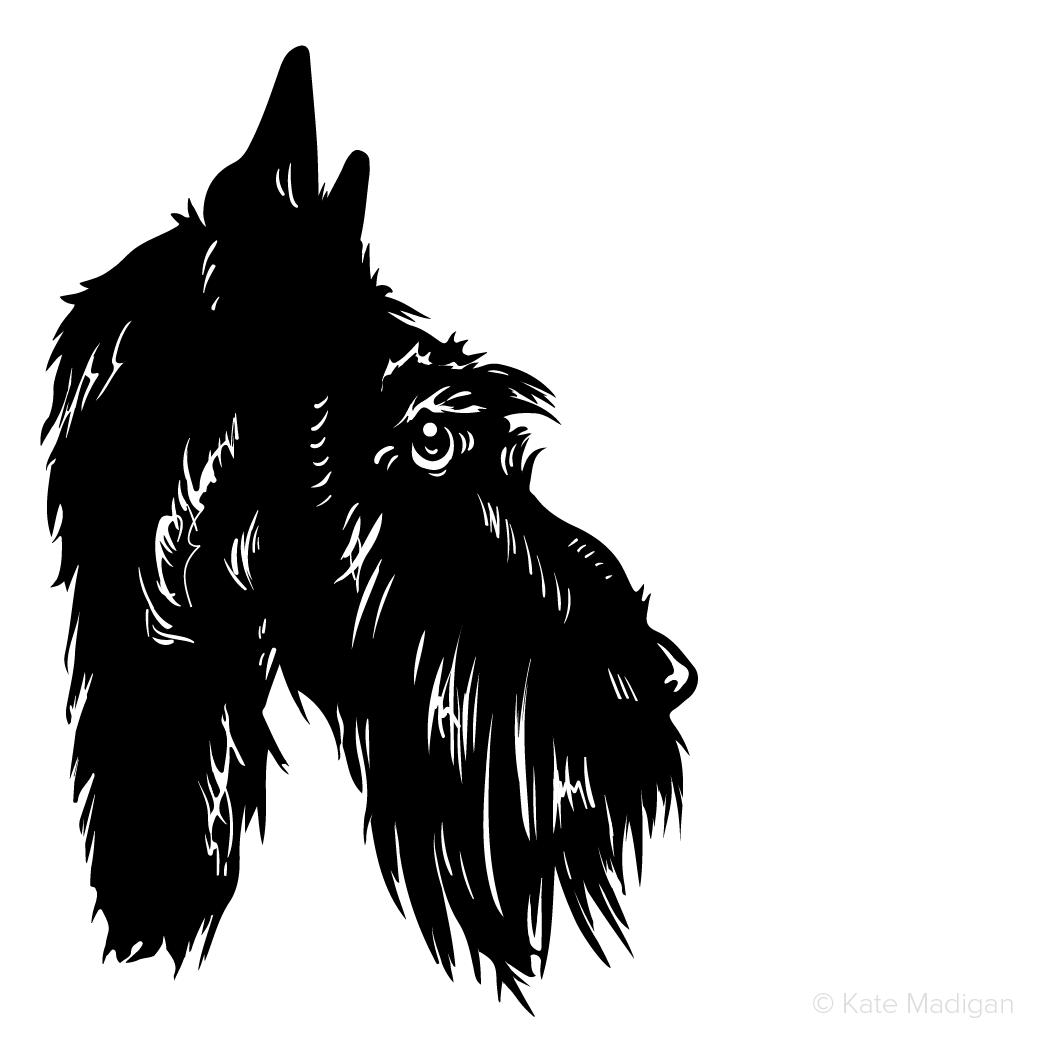 Black and white drawing of a sad, melancholy, depressed, gloomy Scottie dog in profile. Copyright Kate Madigan.