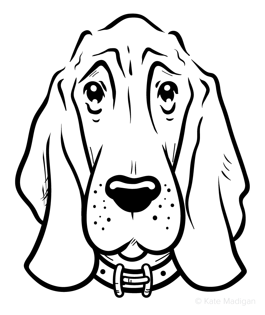Black and white line drawing of a gloomy, melancholy bloodhound  . Copyright Kate Madigan.