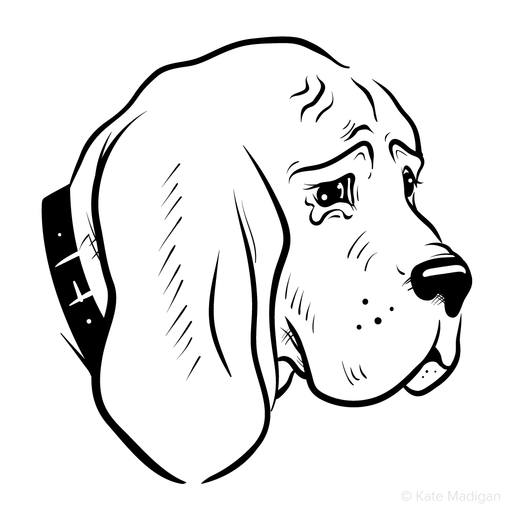 Black and white line drawing of a sad, miserable Great Dane dog turning away with tears in its eyes.   Copyright Kate Madigan.