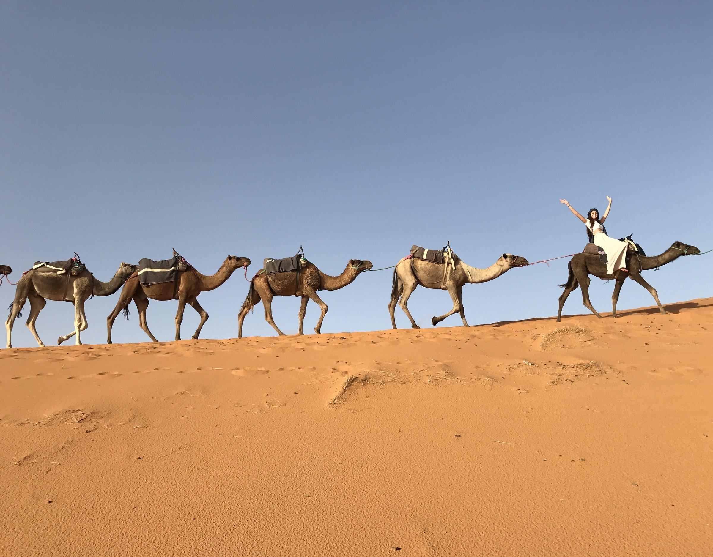 Camel Ride through the Sahara Desert, Merzouga Morocco